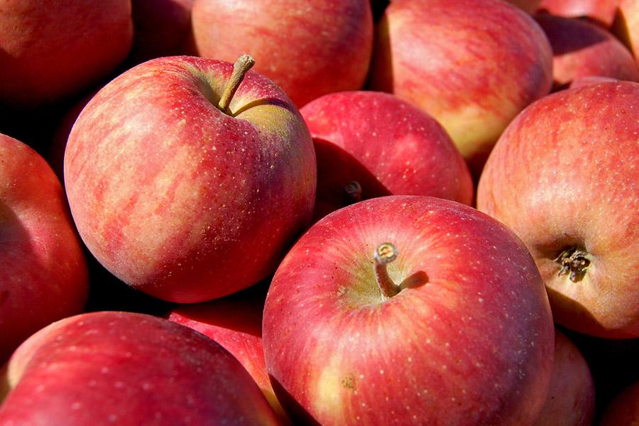 Târgul Mărului