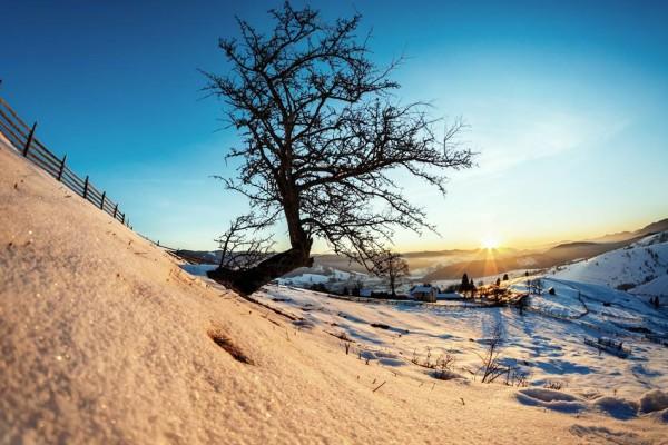 Olari Ionut Photography
